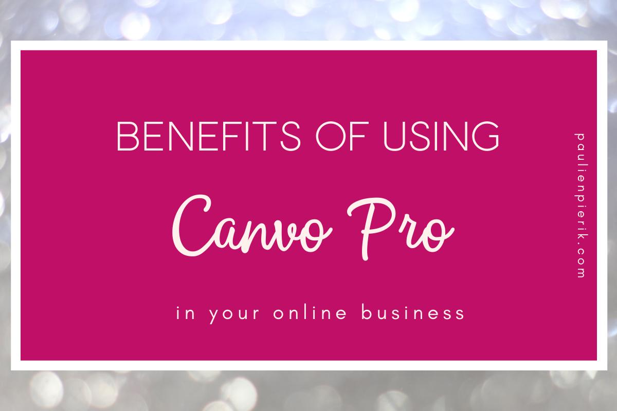 is canva pro worth it blog